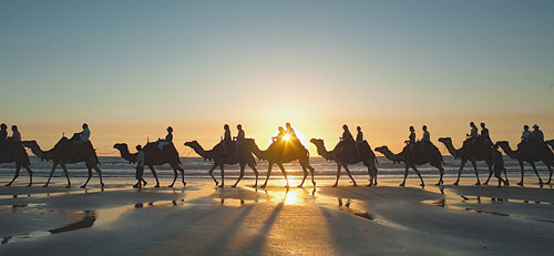 According to the Kazakhstan traveller Bakhtiyar Kozhakhmetov, the world will soon witness a fascinating round-the-world journey on camels.