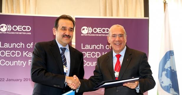 Massimov OECD